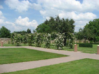 Jardin de l'Abbatiale Altorf
