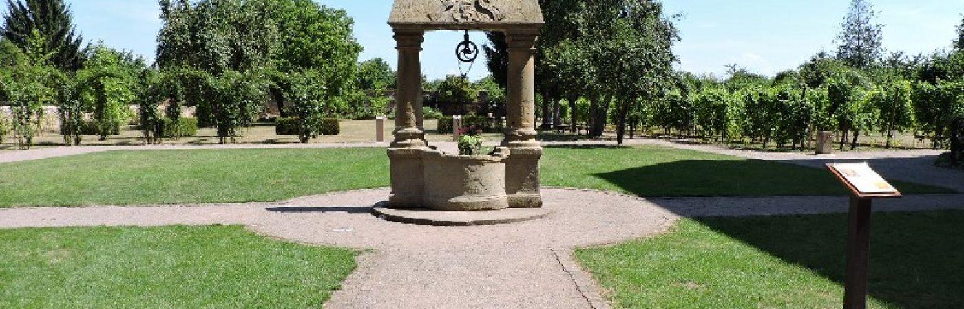 P-13025-F218005929_jardins-monastiques-de-l-abbatiale-saint-cyriaque-altorf.jpg