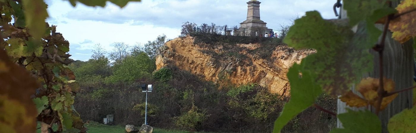 P-13170-F218008788_point-de-vue-de-la-colline-du-horn-wolxheim.jpg