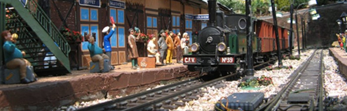 P-13174-F218007432_train-miniature-de-jardin-s-molshemer-bahnele-molsheim.jpg
