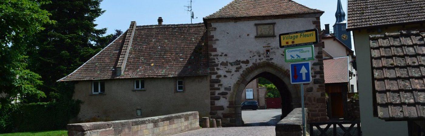 P-14153-F218006671_visite-du-village-medieval-dachstein.jpg