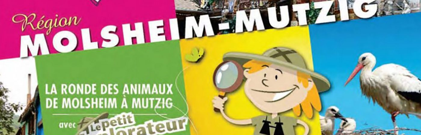 P-24862-F218006553_jeu-la-ronde-des-animaux-region-de-molsheim-mutzig.jpg