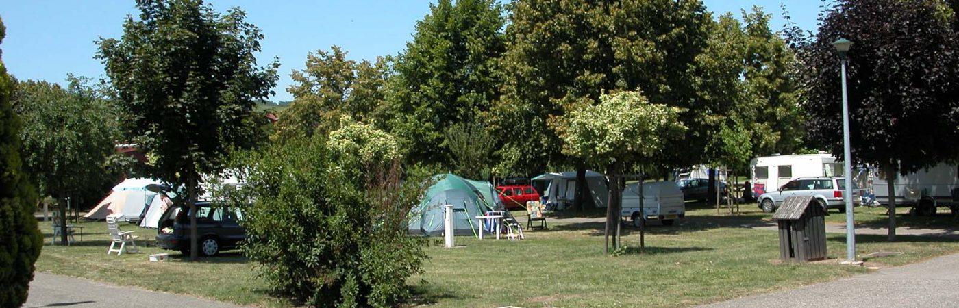 P-24947-F218000535_camping-municipal-molsheim.jpg