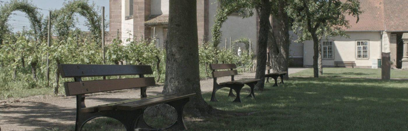 P-25648-F218008555_visite-commentee-de-l-abbatiale-benedictine-et-ses-jardins-pour-groupe-altorf.jpg